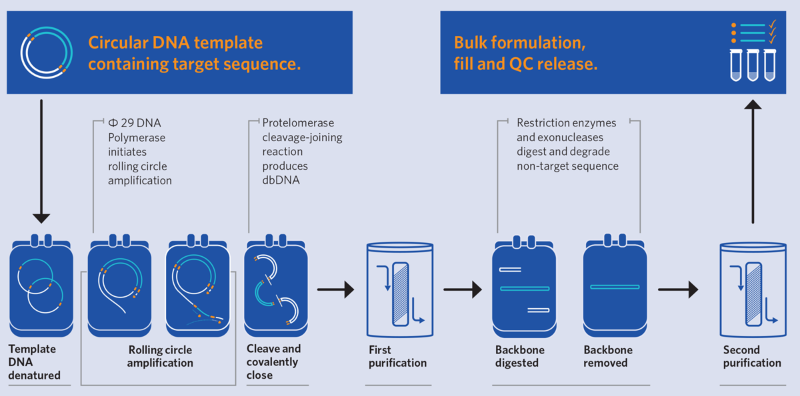 Touchlight DNA synthesis platform